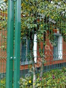 Забор из сетки сварной Казачка-Стандарт