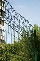 плоская егоза Казачка с ПВХ покрытием на заборе