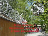 Аналог егозы Казачка на Берлинском зоопарке