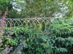 Плоская Егоза зарастает вьющимися растениями