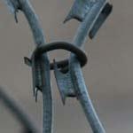 З`єднання витків єгози скобою   з низьковуглецевого дроту