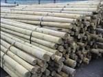 Деревянные столбы длязащиты от града
