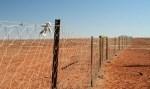 Забор в Австралии для защиты от диких собак Динго и кроликов.