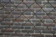 40 летний забор из сетки Рабица с близкого расстояния.