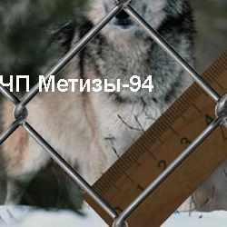 Плетеная сетка Рабица 45х2,2