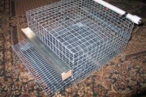 Клетки для перепелов цена сетки