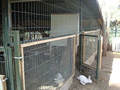 Клетка из сварной сетки для кроликов