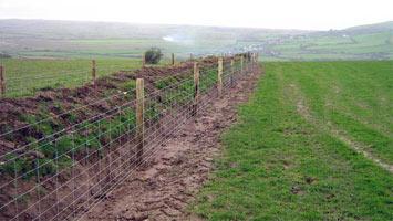 Забор из шарнирной сетки