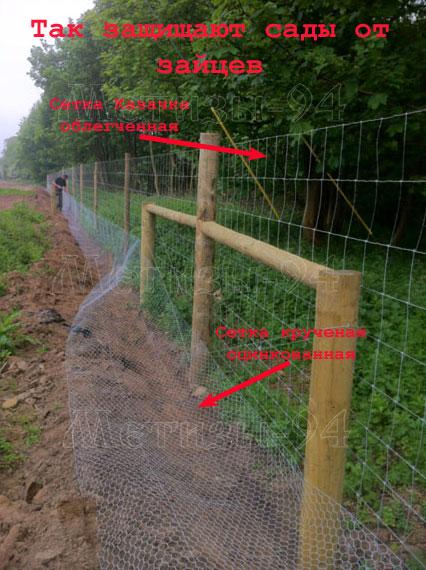 Как сделать забор для защиты сада от зайцев