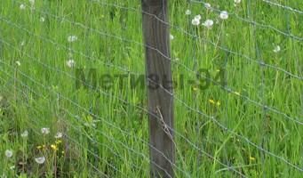 забор для сада, виноградника