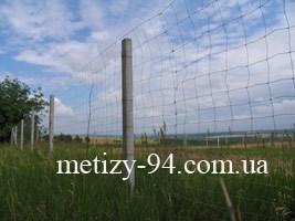 Забор Казачка облегченный на трассе Запорожье-Днепроперовск