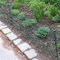 Декоративні паркани з дротяних сіток