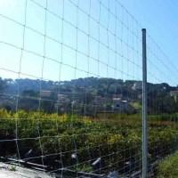 Забор Казачка облегченный для ограждения полей